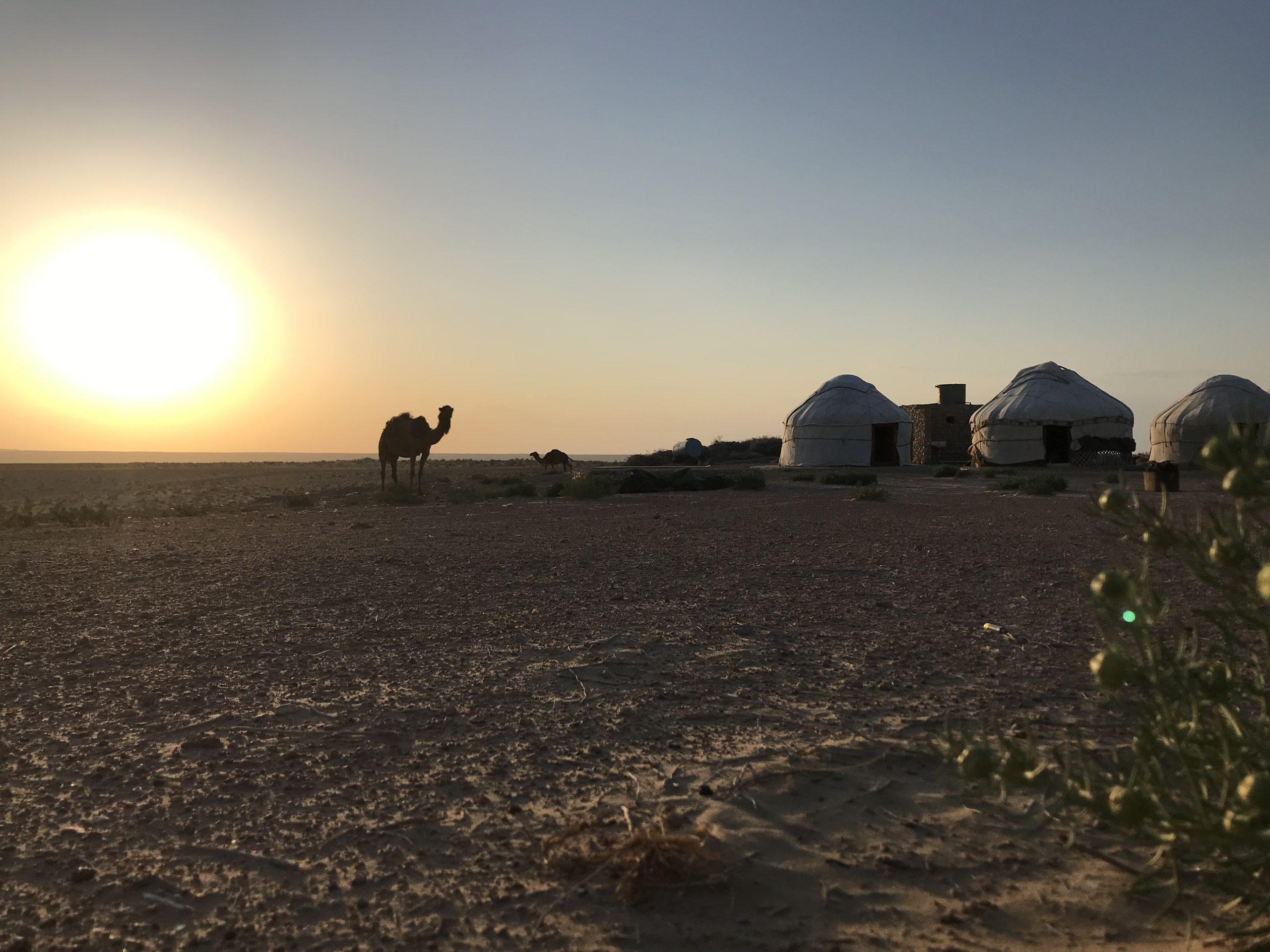 deserto viaggio uzbekstan